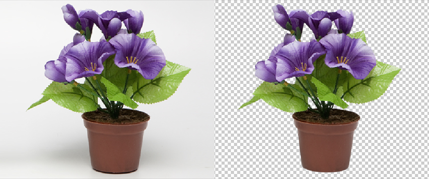 Background Removal Service02